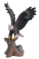 View Eagle on Tree Trunk