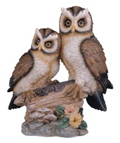 View Owl Couple