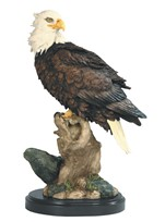 View Eagle -Foraging