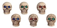 View Mini Skull 6 pc Set