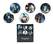 View Magnets -Wizard 6 pc Set