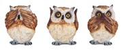 View Owl 3pc Set