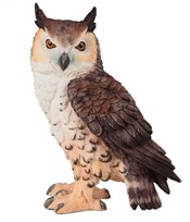 View Brown Owl---