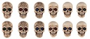 View Magnets Skull 12pc Set