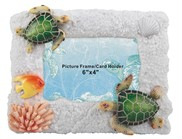 View Green Sea Turtle Picture Frame 6x4