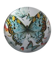 "View 2 3/4"" Butterfly Paperweight"