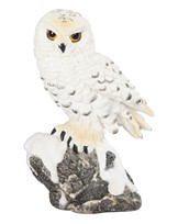 "View 5"" Snow Owl"