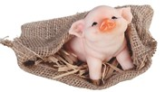 "View 4"" Cutie Pig in Sack"