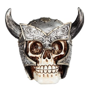 Skull with Ox Horn
