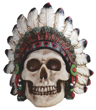 Skull with Warbonnet
