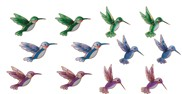 View Magnets-Hummingbird