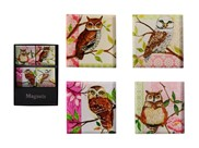View Magnets-Owl 4pc Set