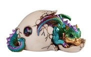 View Blue Dragon Egg