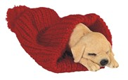 View Dog Sleeping in Red Woven Blanket