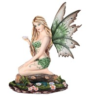 View Green Fairy Sitting on Pond