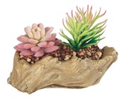 View Artificial Cactus -Woodlike