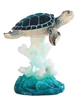 View Sea Turtle on Coral with LED