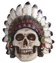 View Skull with Warbonnet